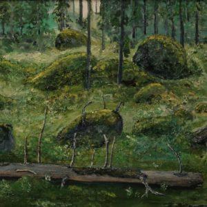 Storskogen Storvreta 1