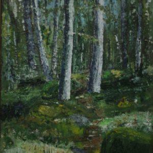 Storskogen Storvreta 2