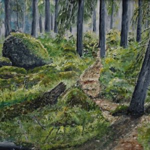 Storskogen Storvreta 3
